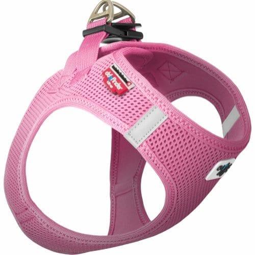 Curli hundsele rosa