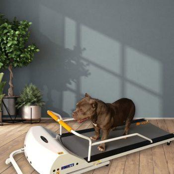 PetRun tredemølle til liten/middels hund PR720F