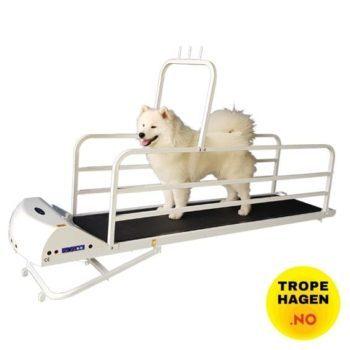 PetRun tredemølle til store hunder PR725