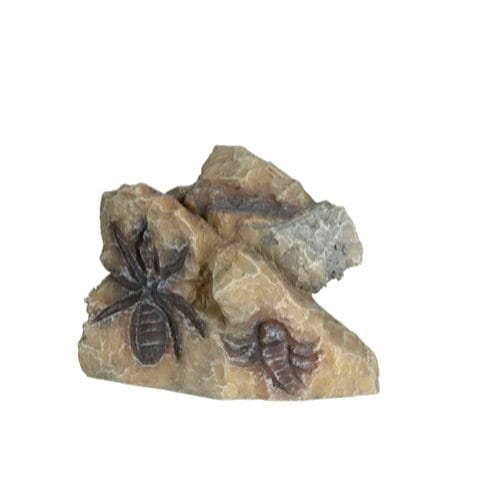 fossil sten tx88272