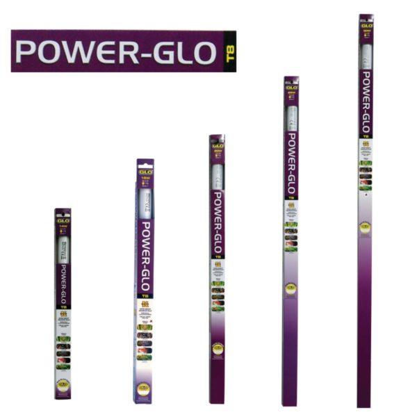 Power glo t8