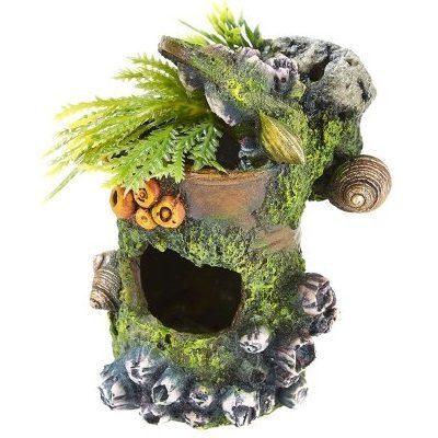Boks med koraller og planter
