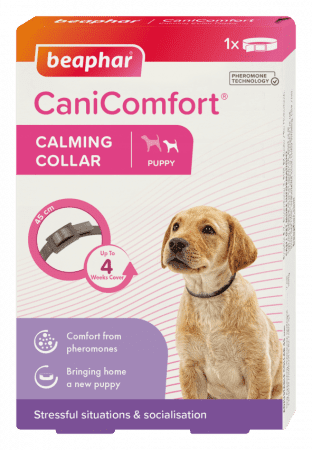 beaphar canicomfort calming collar halsbånd beroligende feromoner