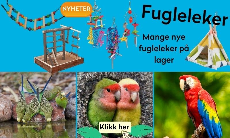 fuglelekertropehagen.no
