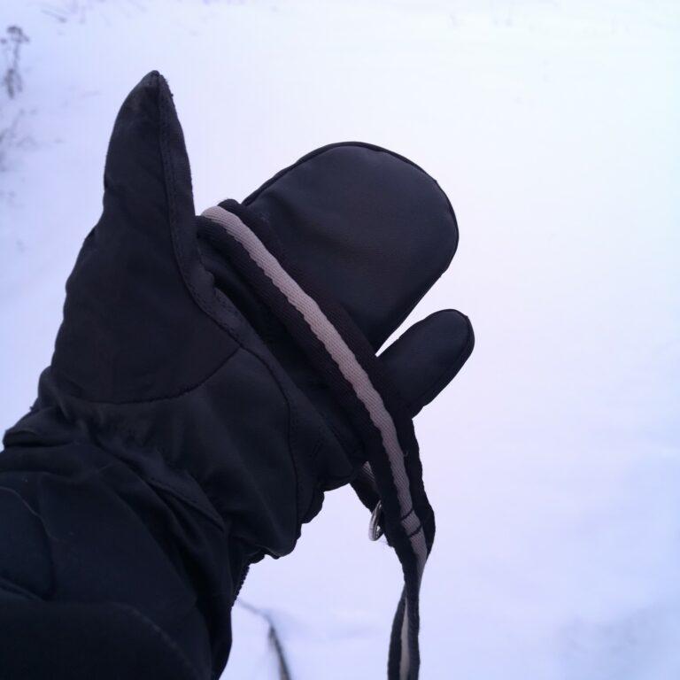 Equipage Eskimo votter