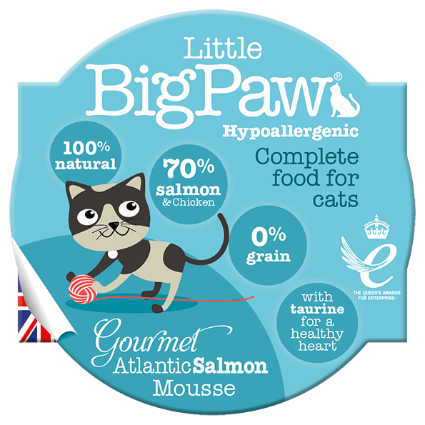 little big paw gourmet atlantic salmon mousse våtfôr