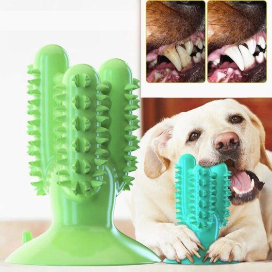 Tannbørste med veggfeste