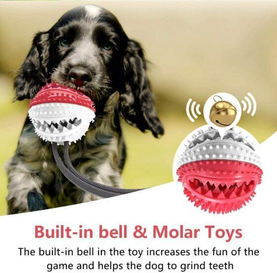 Aktivitet-belønningsball med snor og bjelle til hund