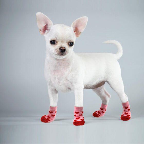 Komfortable Hundesokker/Potesokker/sklisokker Bomull Anti-Skli 4pk,