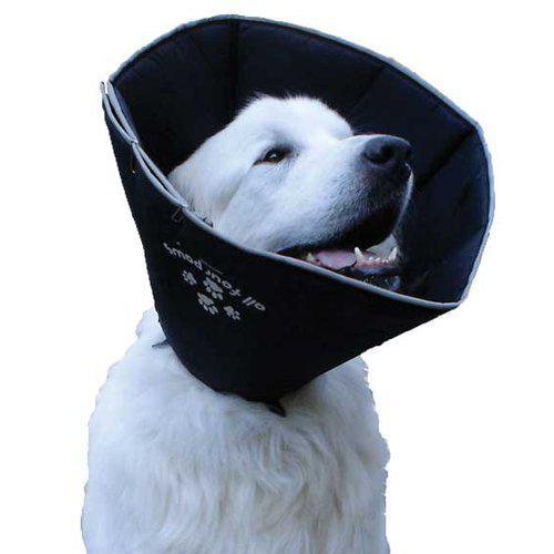 All Four Paws Comfy Cone Myk Hundeskjerm Halskrage Beskyttelseskrage