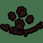 all-four-paws