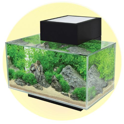 Nano akvarium og glassboller